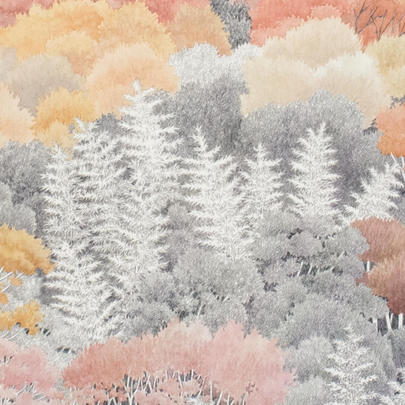 須藤由希子画集